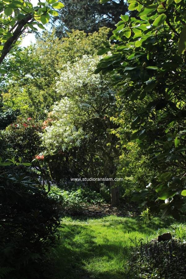 Connie Hansen Garden