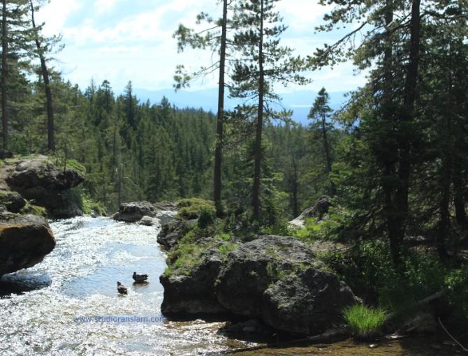 Paulina Creek (3)