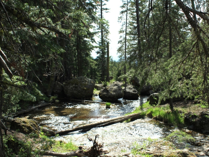 Paulina Creek (4)