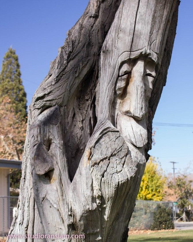 Tree Face 1